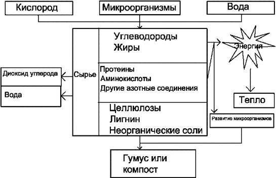 Схема образования компоста
